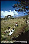 Christmas 1990_TANZANIA_climbing KILIMANJARO in 5 days_unforgettable, what an experience, a real adventure
