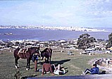 1986_working  as a short-time-expert in Montevideo at the Río de la Plata, URUGUAY; task of my work: 'improvement of URUGUAY´s economic forecasts'_here: the bay of Montevideo from the 117m high hill 'CERRO', 'Parque del Cerro'_Jochen A. Hübener