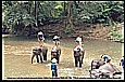 1996_THAILAND_reaching Golden Triangle by motorcycle with great difficulties_elephant camp_wonderful riding_my motorcycle-world-trip 1995/96_Jochen A. Hübener
